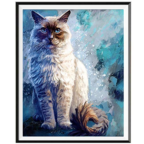 (Sapphire Eye Persian Cat Full Drill DIY 5D Visual Diamond Painting Embroidery Cross Crafts Stitch Kit Office Wall Decor of Cinhent, 25× 30CM, Friends Jewelry Sequins 2019 Gift)