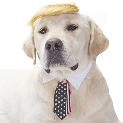 FOMATE Dog and Puppy Costume with Hair Piece Wig and Tie. Make Animals Great Again with This Wacky Political Satire Costume Perfect for Gags, Parties, and Events -