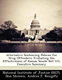 img - for Alternative Sentencing Policies for Drug Offenders: Evaluating the Effectiveness of Kansas Senate Bill 123, Executive Summary book / textbook / text book