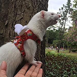 Ferret Harness and Leash Adjustable, Sakura Cotton Cloth Ferret Walking Vest, Soft and Breathable Ferret Lead Leash with Angel Wings and Safe Bell 33