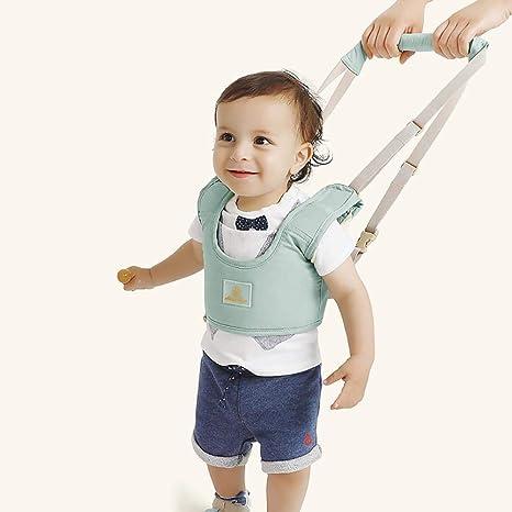 Arnés de seguridad para bebé, tipo cesta, cinturón de seguridad ...