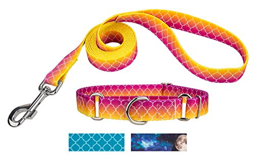 Country Brook Design | Fabulous Ombre Martingale Dog Collar & Leash - Large ()