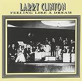 Larry Clinton: Feeling Like a Dream