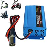 24V 5Amp Smart Automatic Battery Charger, Portable Battery Maintainer With XLR Connector