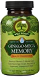 Well Roots Ginkgo-Mega Memory Supplement, 60 Count