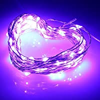IWISHLIGHT™ 33Ft Copper Wire LED Starry Lights 12V DC LED String Light Includes Power Adapter with 100 Individual Leds (Purple)