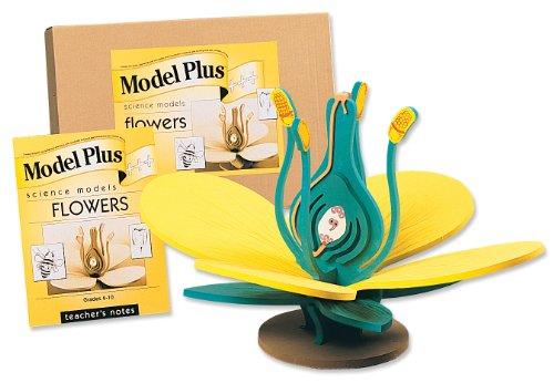 flower model - 4