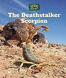 The Deathstalker Scorpion (Toxic Creatures)