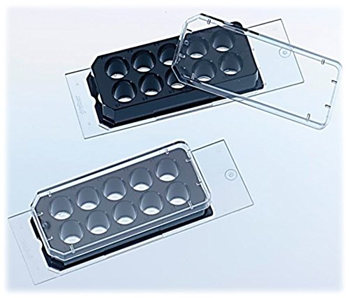 Greiner Bio-One 543079 CELLview Bottom Cell Culture Slide, Sterile, 25 mm Wide, 75 mm Length (Pack of 45) by Greiner Bio One