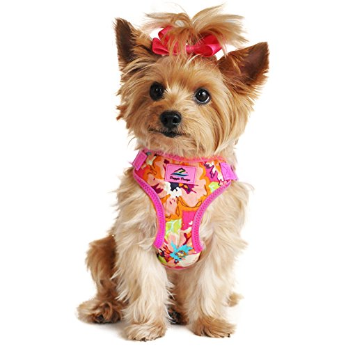 Design Snap (Doggie Design Wrap and Snap Choke Free Dog Harness - Aruba Raspberry (S))