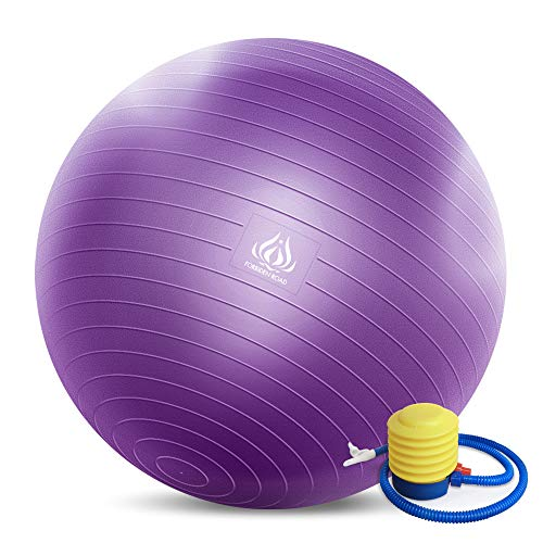 Forbidden Road Exercise Yoga Ball (4 Sizes, 4 Colors) 400 lbs Anti-Burst Slip-Resistant Yoga Balance Stability Swiss Ball for Fitness Exercise with Free Air Pump (Purple, Diameter: 60-65cm)