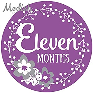 12 Monthly Baby Stickers, Purple, Gray, Flowers, Girl, Baby Belly Stickers, Baby Month Stickers, First Year Stickers Months 1-12, Purple, Grey, Baby Girl 9