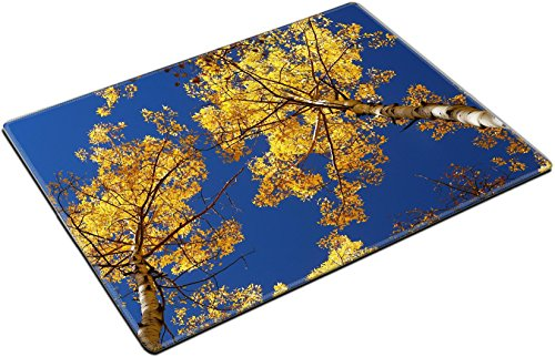Aspen Placemat - MSD Place Mat Non-Slip Natural Rubber Desk Pads design 34420447 yellow tree from colorado