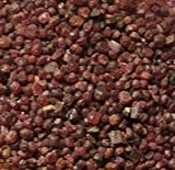 Safe & Non-Toxic {Various Sizes} 10 Pound Bag of Gravel & Pebbles Decor Made of Genuine Garnet for Freshwater & Saltwater Aquarium w/ Warm Toned Simple Natural Smooth Earthy Rustic Style [Red & Tan]