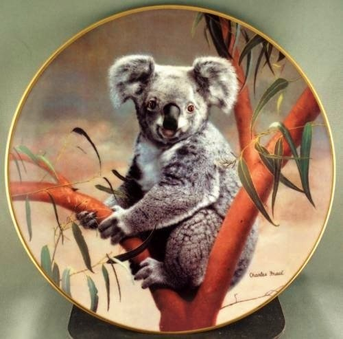 Koala by Charles Frace' Nature's Lovables Collectible Plate