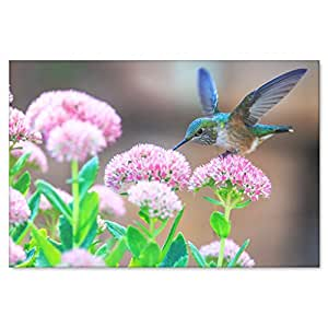 Blue Hummingbird in Garden Canvas Wall Art - Pretty Hummingbird on a Lovely Day in 4 Sizes: 8 x 12, 16 x 24, 20 x 30, 24 x 36 inches by The Mind Body Spirit Store