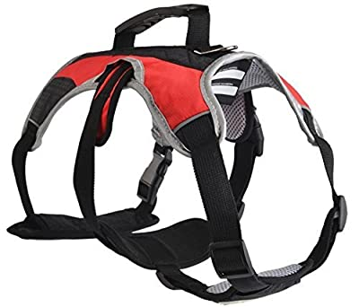 EXPAWLORER Escape Proof Outdoor Dog Harness Safety Air Mesh Reflective 5 Points Adjustment Pet Vest with Handle for Hiking, Walking & Climbing (Red,Extra Large)
