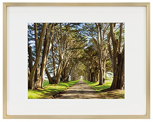 Golden State Art 11x14 Picture Frame - Gold Aluminum (Shiny Brushed) - Fit Photo 8x10 With Ivory Mat or 11x14 without Mat - Metal Frame by Wall Mounting - Real Glass (11x14, Gold) (Mats Gold)