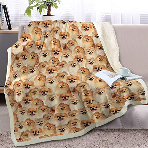 BlessLiving Fuzzy Dogs Blanket for Kids Adults Cute Puppy Fleece Blanket Reversible Animal Pattern Sherpa Throw (Pomeranian,Throw, 50 x 60 Inches) ()