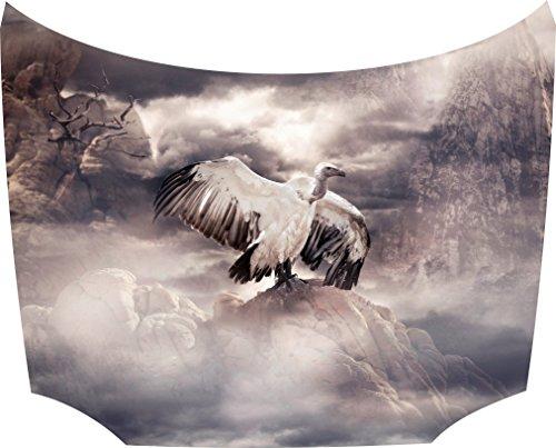 Bonnet Sticker Vulture: