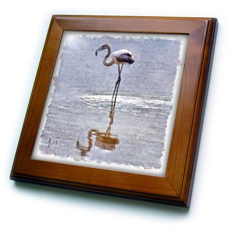 3dRose Taiche - Watercolor Painting - Flamingos - Flamingo Ripples and Reflections Watercolor - 8x8 Framed Tile (ft_284649_1) -