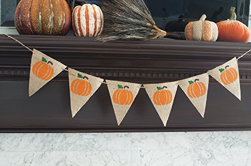 Pumpkin Banner, Fall Decorations, Thanksgiving Decor, Pumpkin Garland B098]()