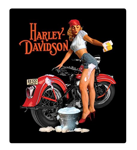 Harley-Davidson Wash Babe Tin Metal Sign, 13 W x 15 H Inch ()