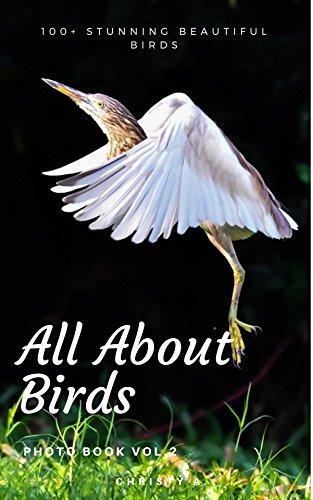 All about birds Photo Book Vol.2: 100+ stunning beautiful birds