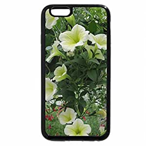iPhone 6S Plus Case, iPhone 6 Plus Case, Flowers day at the greenhouse 83