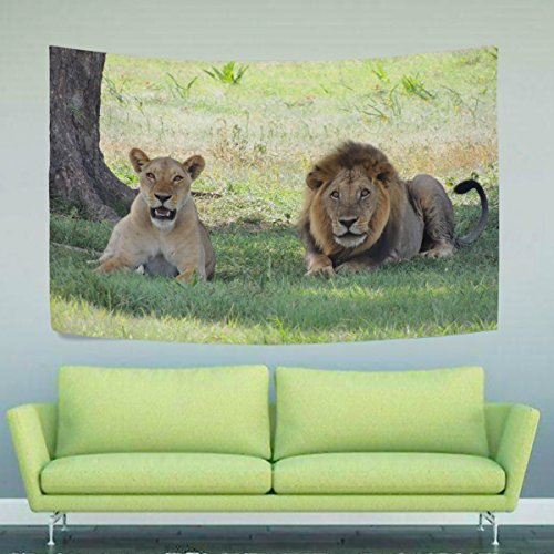 WIHVE Lions Wall Hanging Tapestry with Romantic Pictures Art Nature Home Decorations for Living Room Bedroom Dorm 80x60 Inch
