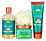 Tree Hut Coconut Lime Shea Body Regimen, 3 Products in one Set, for Nourishing Essential Body Care