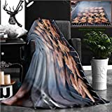 """Nalagoo Unique Custom Flannel Blankets Street Food Thai Barbecue Grilled Chicken Super Soft Blanketry for Bed Couch, Twin Size 70"""" x 60"""""""