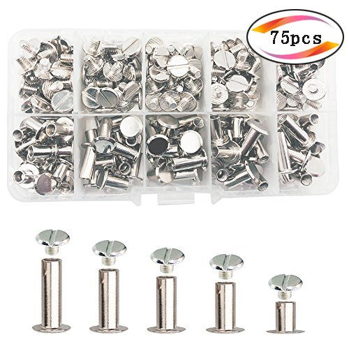 Screw Rivet - 75 Sets Silvery Chicago Screws Assorted Kit 5 Sizes Round Flat Head Stud Screw Posts Metal Accessories Nail Rivet Chicago Button for DIY Leather Decoration Bookbinding (Silver)