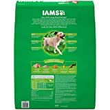 IAMS PROACTIVE HEALTH Adult High Protein Large