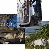 岩合光昭の世界ネコ歩き 第5弾 ブルーレイ 全3枚セット【NHKスクエア限定商品】