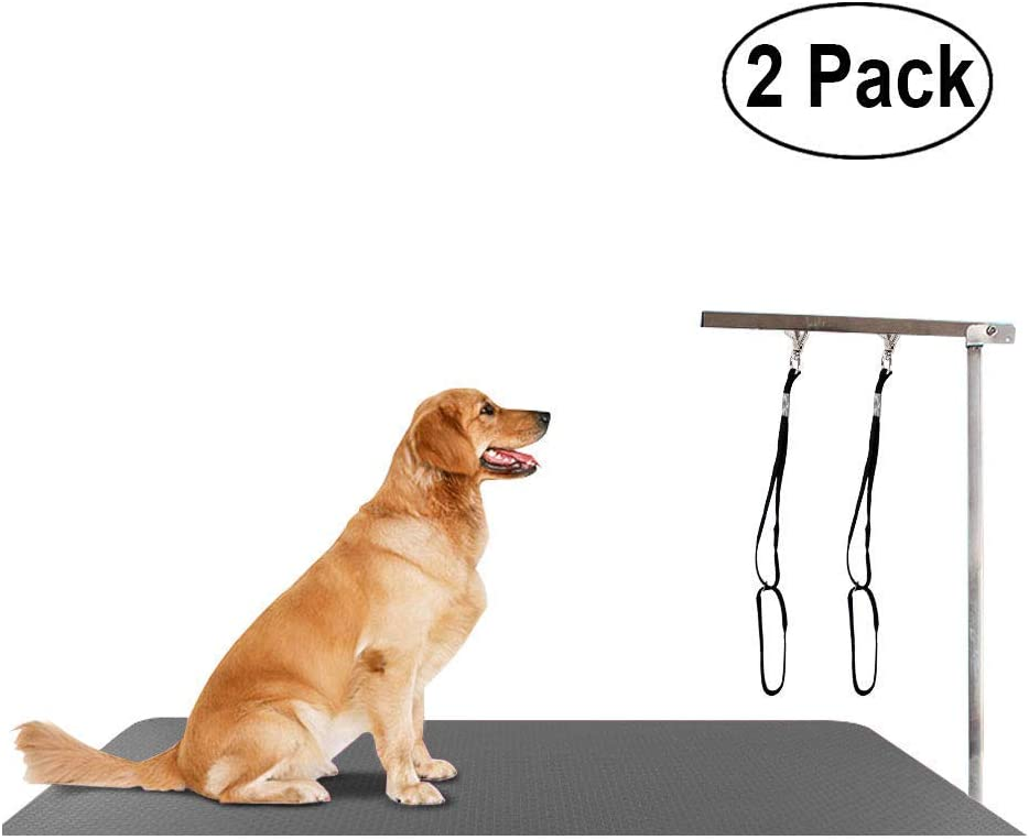 S 2 Pack Dog Grooming Restraint Dog Pet Noose Loop Animal Cat Lock