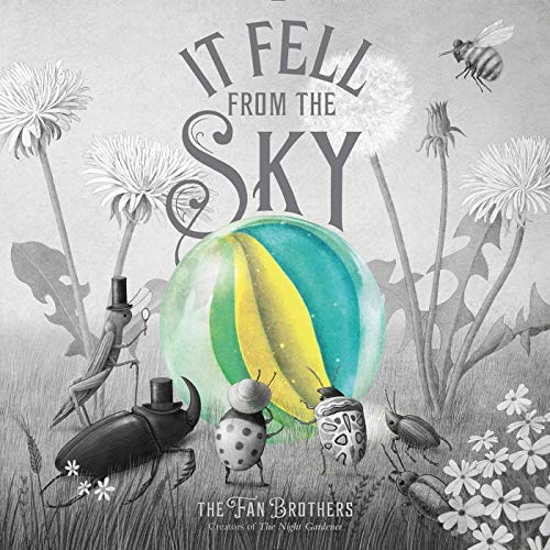 Book Cover: It Fell from the Sky
