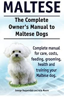 General Health Information for your Maltese