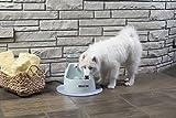PetSafe Drinkwell Big Dog Pet Fountain