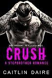 crush a stepbrother romance