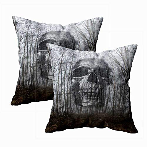 Gesmatic Bed Pillow Covers, Throw Pillow Case Zipper Pillow Cases Spooky Double Exposure of Skull Floating Through The Trees with Textured Fun Pillow Cases Pillow Covers 18X18 Inches Set of 2