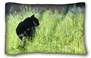 Soft Pillow Case Cover Animal Custom Cotton & Polyester Soft Rectangle Pillow Case Cover 20x30 inches (One Side) suitable for Full-bed