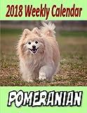 2018 Weekly Calendar Pomeranian