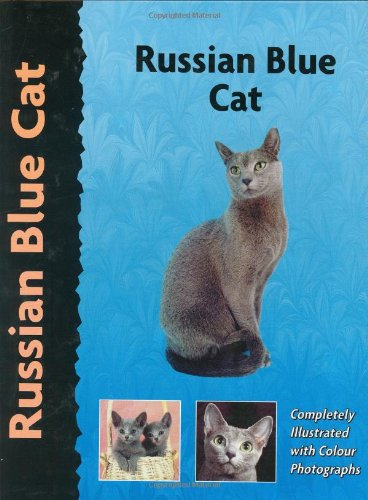 Russian Blue Cat (Pet Love)