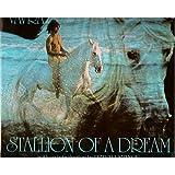 Stallion of a Dream
