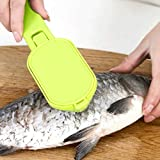 CapsA Skinner Scaler Fishing Tools Stainless Steel Fish Scale Remover Cleaner Scaler Scraper Kitchen Peeler Tool (Green)