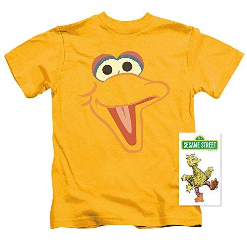 Toddler Sesame Street Big Bird Face T Shirt (2T)