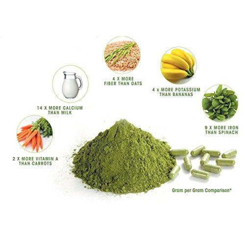 photo Wallpaper of 2Tre-Moringa Powder   2Tre-green