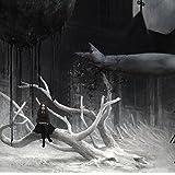 UNDYING(初回生産限定盤)(DVD付)