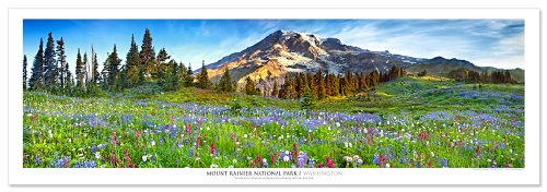 Award Winning Landscape Panoramic Art Print Poster: Mount Rainier National Park (Daytime) (National Gallery Best Paintings)